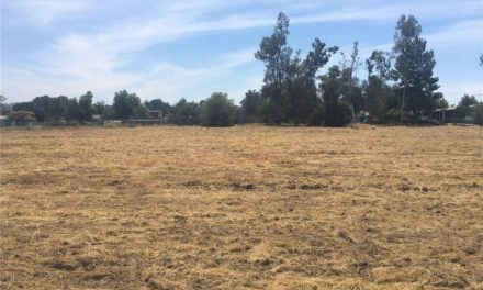 Opportunity for a Business Location Next to Lake Elsinore Airport